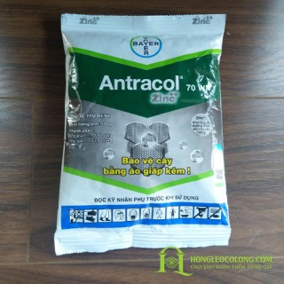 Thuốc diệt nấm- ANTRACOL 70 WP